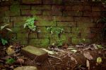 Mossy Brick Wall by Armathor-Stock