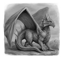 Dragon 2 by SHAWCJ