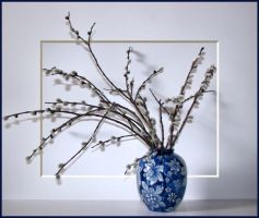 Pussy Willow Bouquet - updated by dove-51