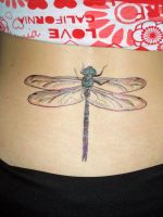 Sharpie dragonfly by originalclosetnerd