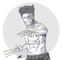 Wolverine 1 by MDC-PRODUCTIONS