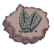 Back Spike Fossil (CoC Fossil) by Dianamond