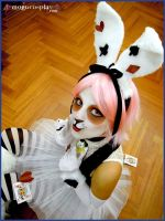 White Rabbit-AliceInWonderland by drummerina