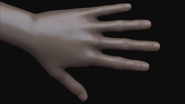 Female Zbrush Sculpt (hand) - WIP by shellcasing