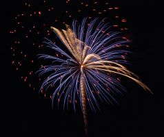 fireworks 2012 4 by Me-mice-elf-and-eye