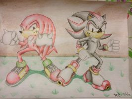 Knuckles and shadow by hybridchick