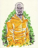 Walter White Breaking Bad 2 by calslayton