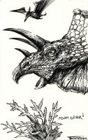 Triceratops by adamgeyer