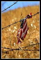 Stars, Stripes, and Barbwire by TomasGarcia