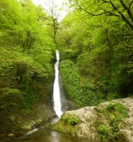 Lydford Gorge: View 147 by yaschaeffer