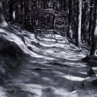 Cold Path by vlr