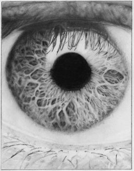 Eye Study Graphite by Kalgoras