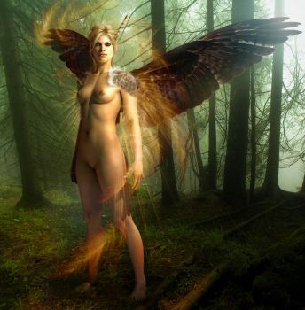 Forest Angel by mrpeculiar