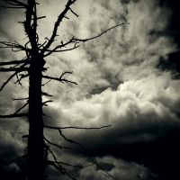 CCVIII. ..end of days by behherit