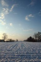 Winter country by massimomalvestio