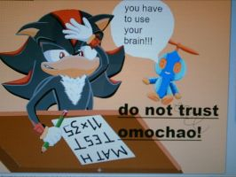 SHADOW DO NOT TRUST OMOCHAO by shadowhatesomochao