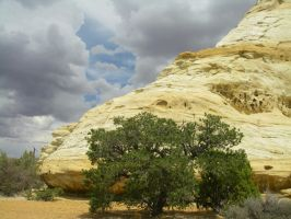 Ghost Rock Utah Trees and Clouds by archambers