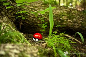 poke ball by AfricanRion