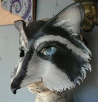 Racoon masks by faerywhere
