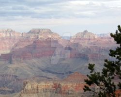 Grand Canyon View by LaurelPhotoandCraft