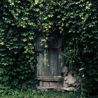 Forgotten door by KARRR