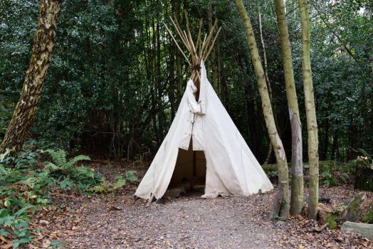 DSC 0071 01 Groombridge Place Tipi by wintersmagicstock