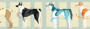 Elemental Auction :CLOSED: by DemThree-Adopts