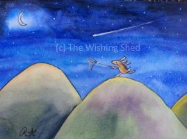 Catching stars! by thewishingshed