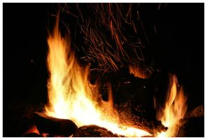 Fire Log 04-1 by NOS2002