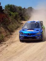 Solberg - Rally Sardinia by ShinjiRHCP