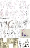 Life Drawing nov 24th 2010 by tigr3ss