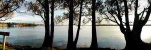 Lake Cadillac Late Afternoon by DMWVCS