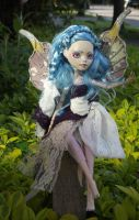 Titania - Queen Of The Fairies by mortimersparrow