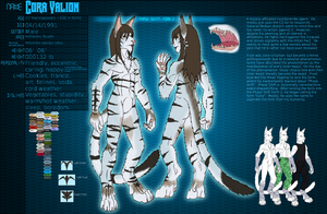 Character Sheet:Cora Valion by FrostWyrm102