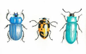 Three Beetle Bugs by Art-in-Murder