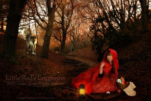 Little Red's Encounter by ADamselinDesign