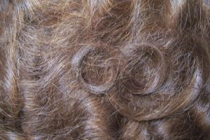 Human hair texture-2 by paintresseye