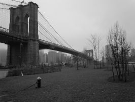 Another View of The Brooklyn Bridge by Brooklyn47