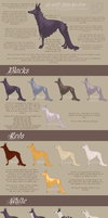 Le Petit Chien des Fees: Breed Sheet by PaintedCricket