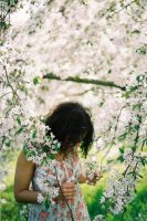 Surrounded by Petals by WillAustinsArchive