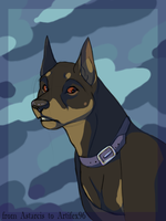 Doberman for artifex by Astarcis
