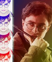 Harry Potter Banner by anadoring