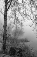 Fog at the lake Black and White by LarryRaisch