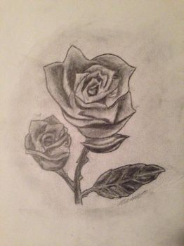 Rose drawing by Empi-lll