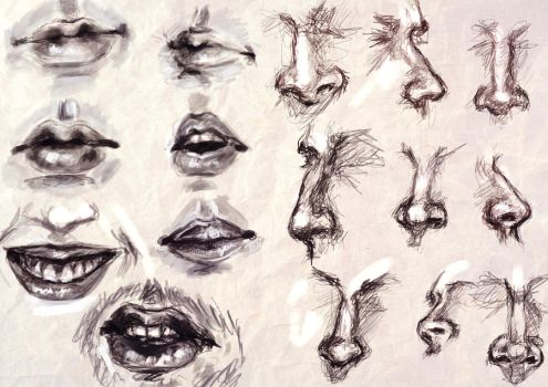 Study - Mouth and Nose by RuxandraLache