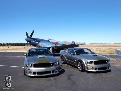 All P-51 Mustangs by Swanee3