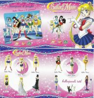 Sailor Moon Panflet by renataeternal