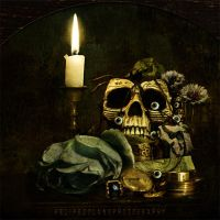 Vanitas by IMAGENES-IMPERFECTAS