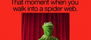 that moment when you walk into a spider web... by PandahHero