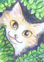 Peeping Rugford ACEO by KingZoidLord